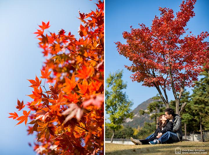 Desmond_Shelly_Korea-Nami-Island-Seoul-Prewedding_Photography_Photographer_Malaysia_Kuala_Lumpur_Ooi_Eric_Studio_23